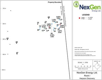 Nex Gen Assay Results